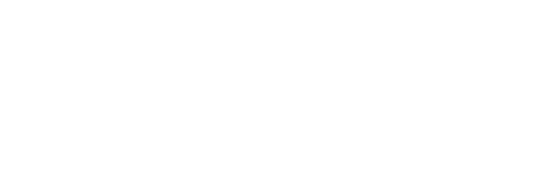 aounlawfirm.com